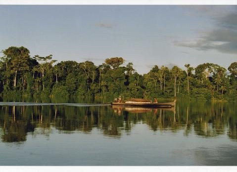 amazonas-brasil.jpg